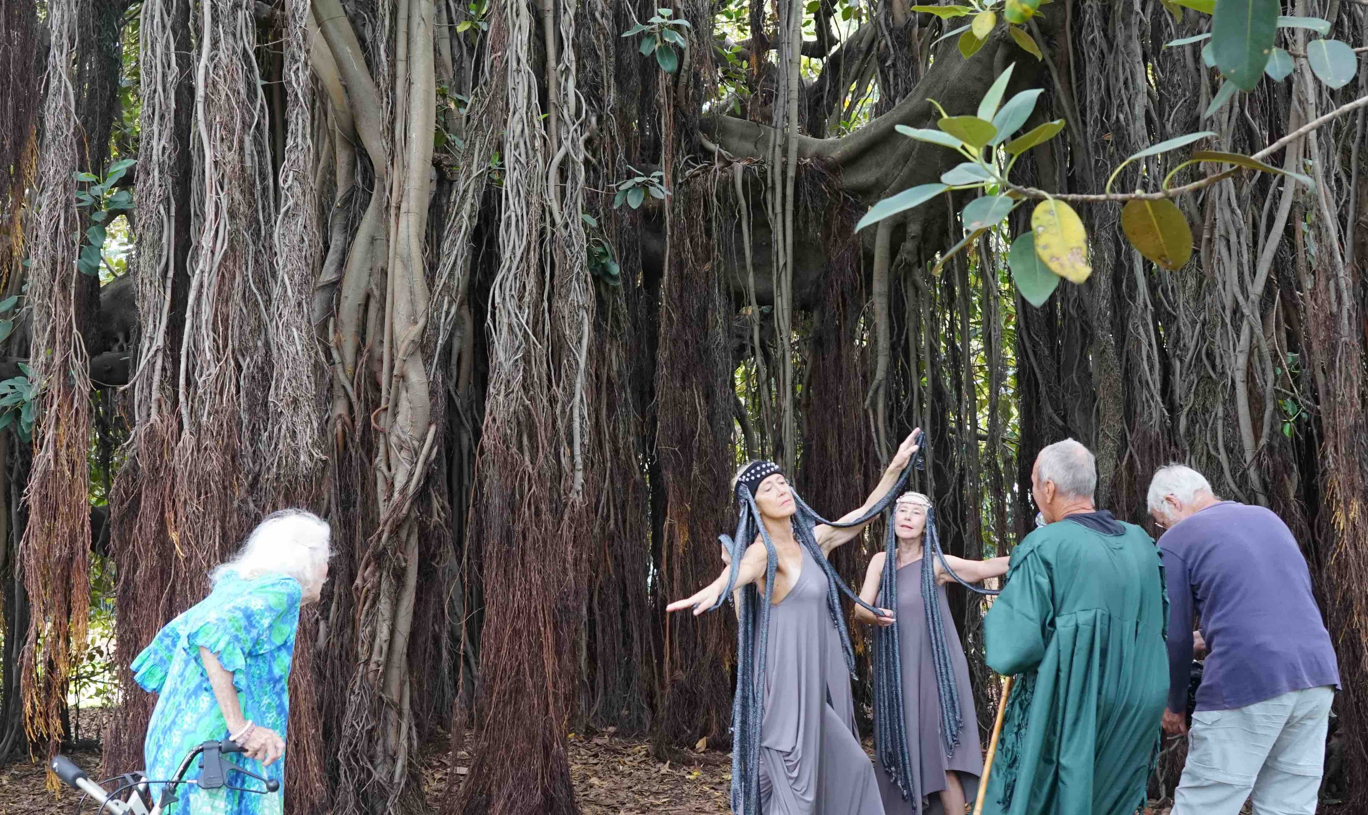 Eileen watches dancers Shane Carroll and Julia Cotton wearing headdresses inspired by the tree's aerial roots, with Patrick Harding-Irmer and cinematographer Richard.